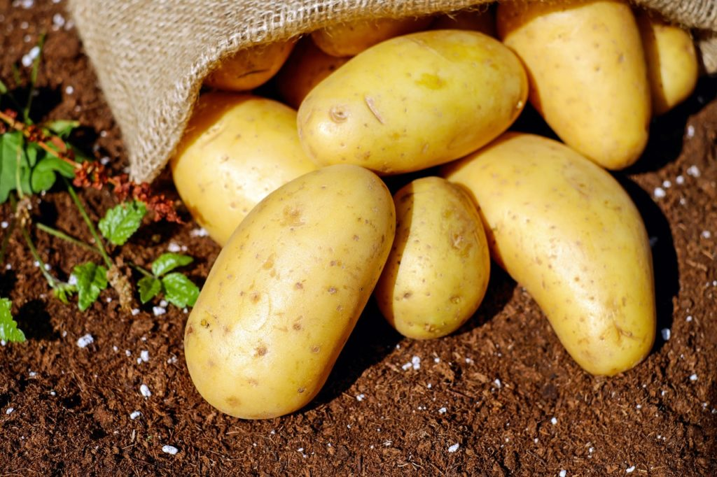 Benefits of eating potatoes daily