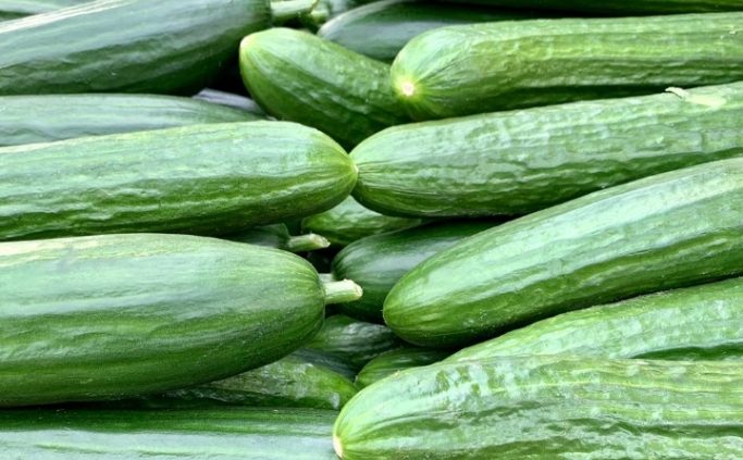 9 cucumber benefits for better health